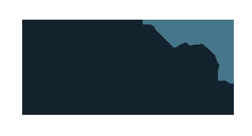 Palmhive Logo